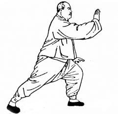 Seniors Tai Chi